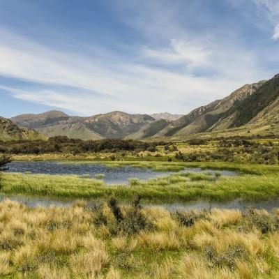 Lake Sumner National Park, South Island, New Zealand